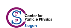 Center for Particle Physics